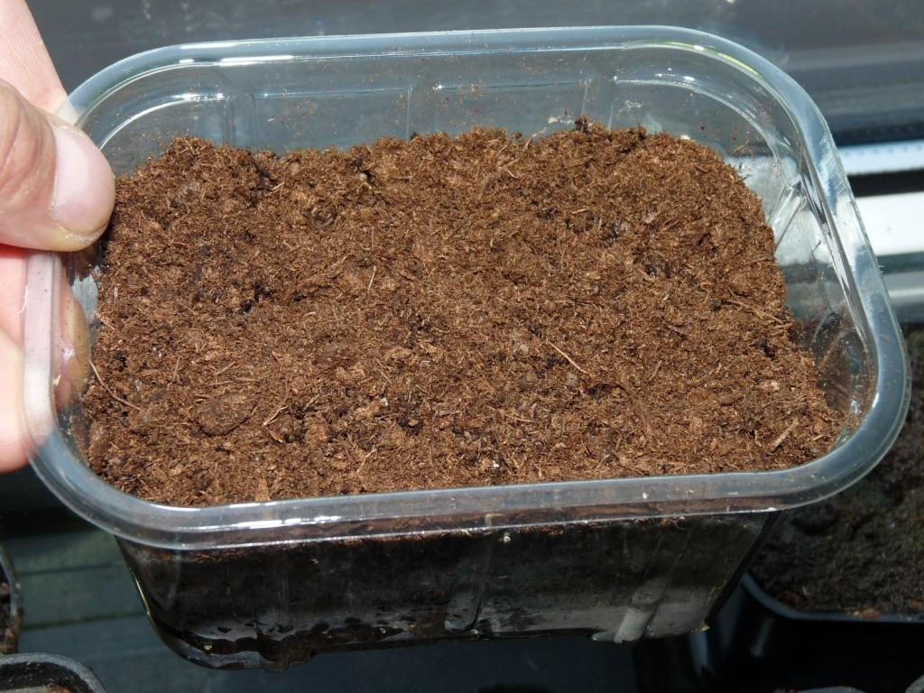 inkubator nasion8