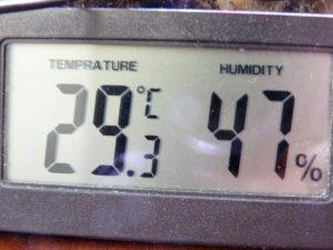Temperatury wewnątrz terrarium są zbyt wysokie.